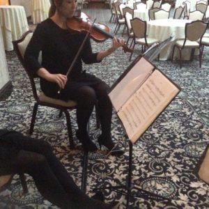 iconiQ Strings