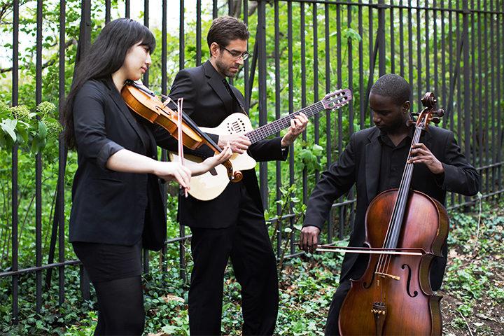 Violin, guitar, cello trio